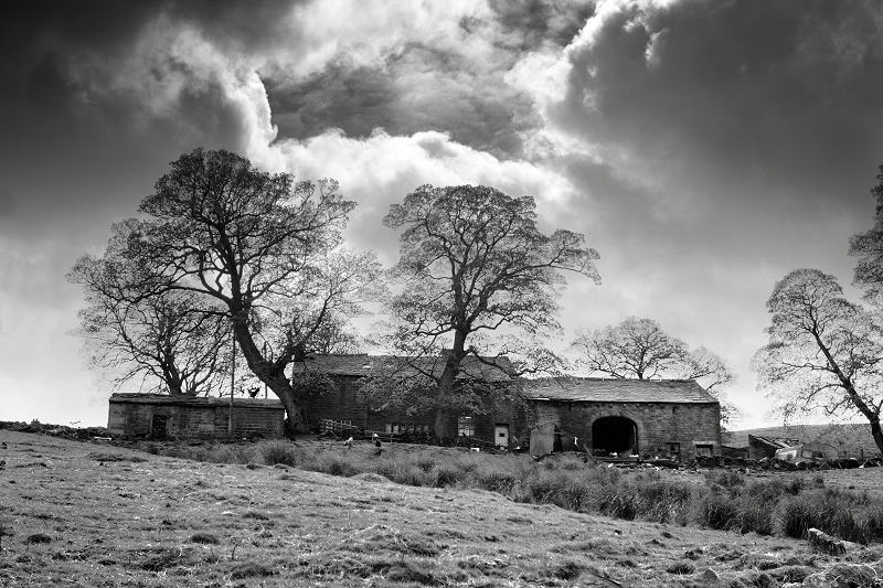 Rush Isles farm, Ponden