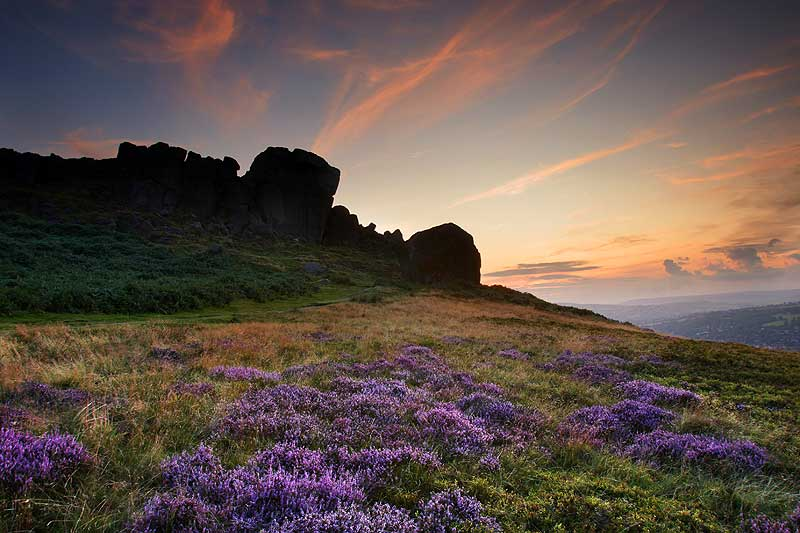 Cow and Calf Ilkley at sunset