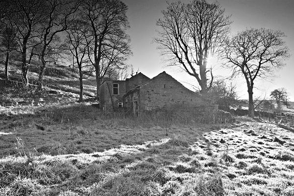 North Far Ives Farm, morning frost, BW conversion
