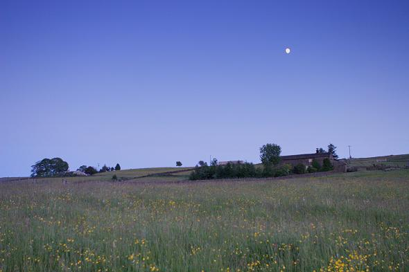 Farmhouse and moon at dusk
