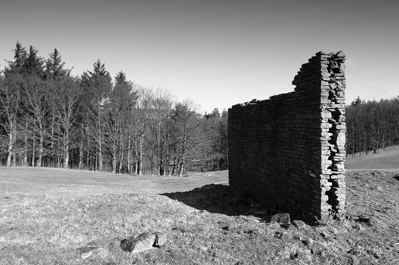 Ruin near Enfieldside