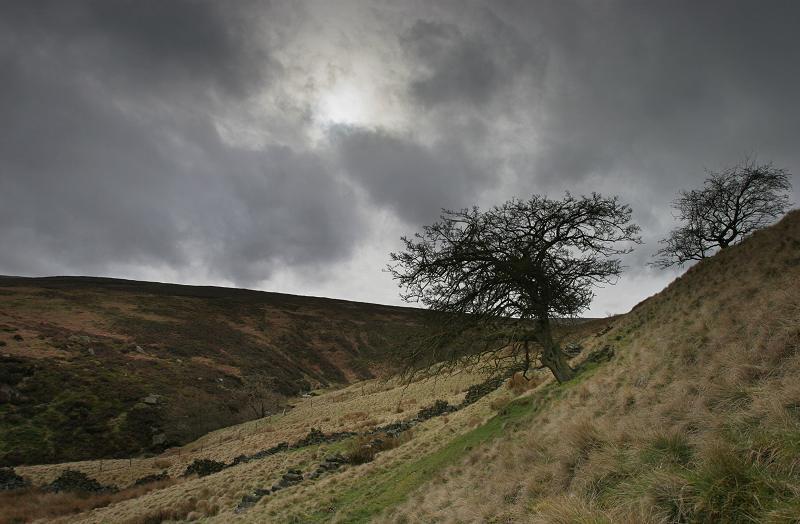 Near Bronte falls