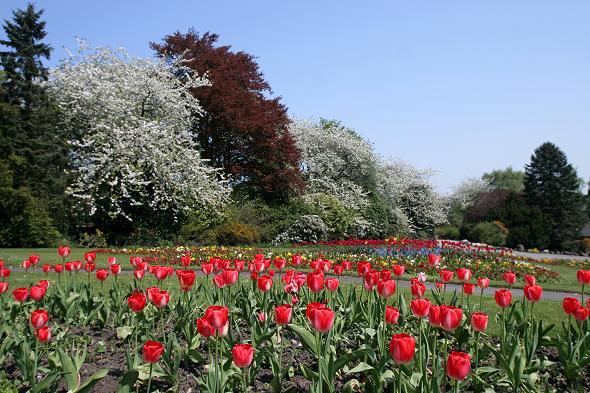 Haworth Park
